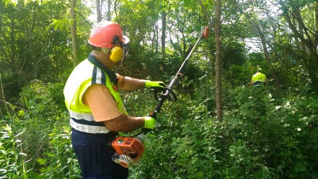 attrezzature forestali 2