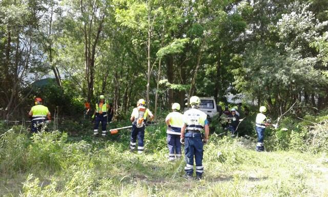 attrezzature forestali 3